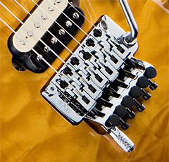 Floyd Rose Disadvantages | RM.